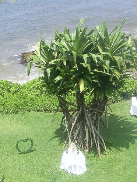 Mount Lavinia Hotel, Colombo, Sri Lanka